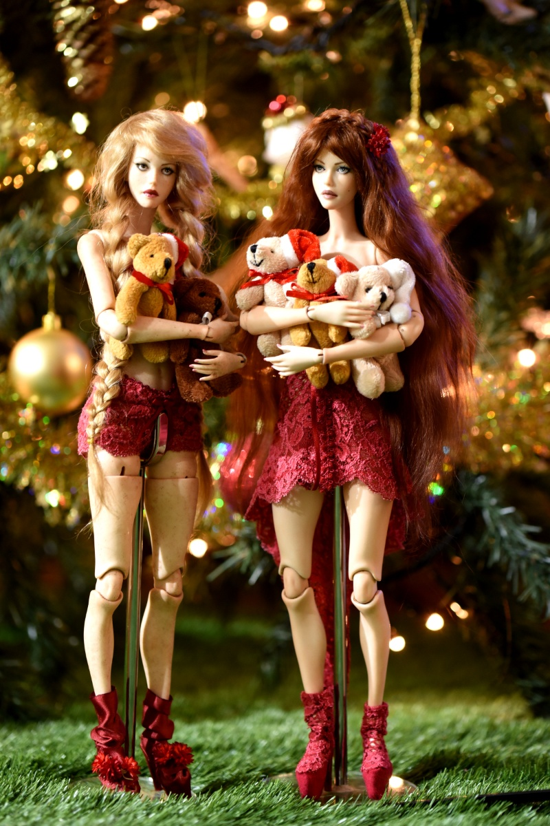 Ball Jointed Doll Cuddly sisters
