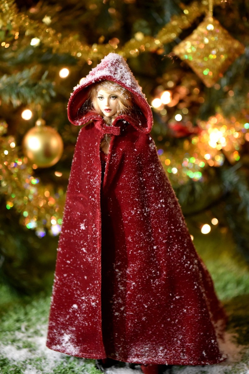 Ball Jointed Doll Lady Hooded